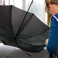 Regenschirm Kontrolle